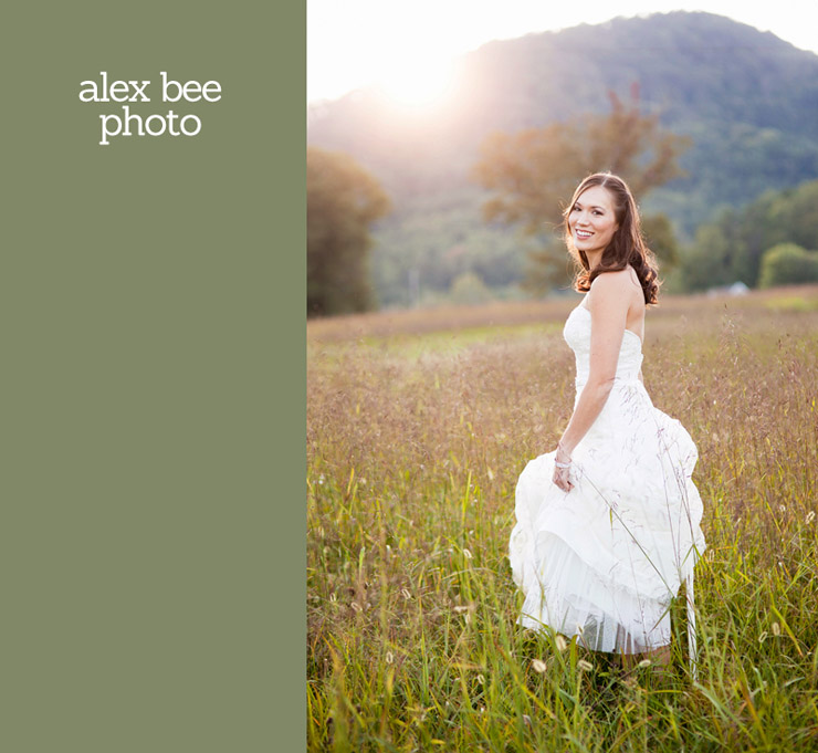 the best of alex bee photo