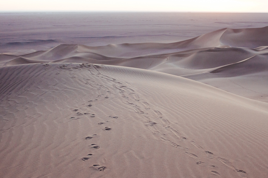 footsteps in gobi desert
