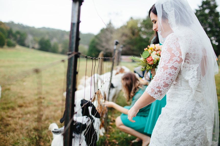 the barn at high point farms bride with goat